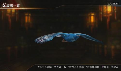 蒼鳥のアップ画像
