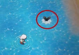 ペリッパーが水上に出現
