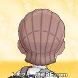サンムーン男主人公の髪型ブレイズ・髪色ピンクブラウンの後ろ姿